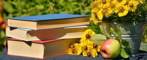 books-1757734__340